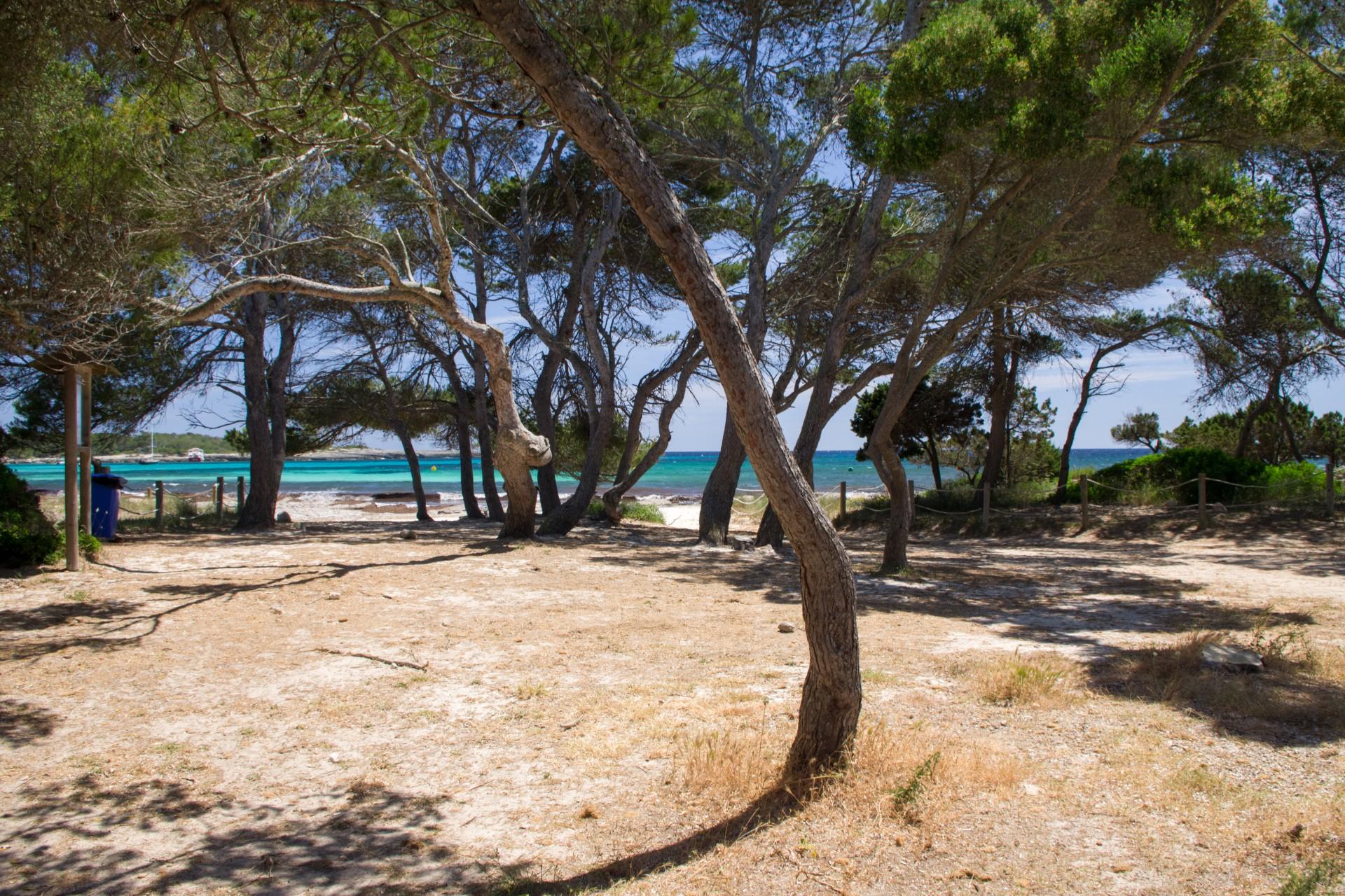 Paulilles-visite-le-dauphin-camping-argeles-06-1024x683