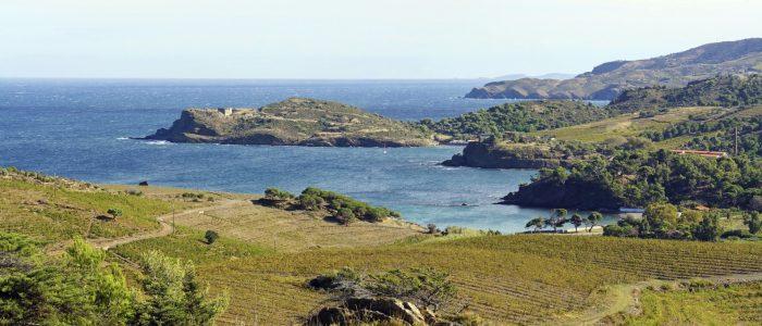 sentier du littoral randonnée accompagnée argeles le dauphin|sentier du littoral randonnée vue mer argeles|visite collioure littoral||