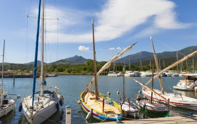 Oenotourism : Les Clos de Paulilles 2