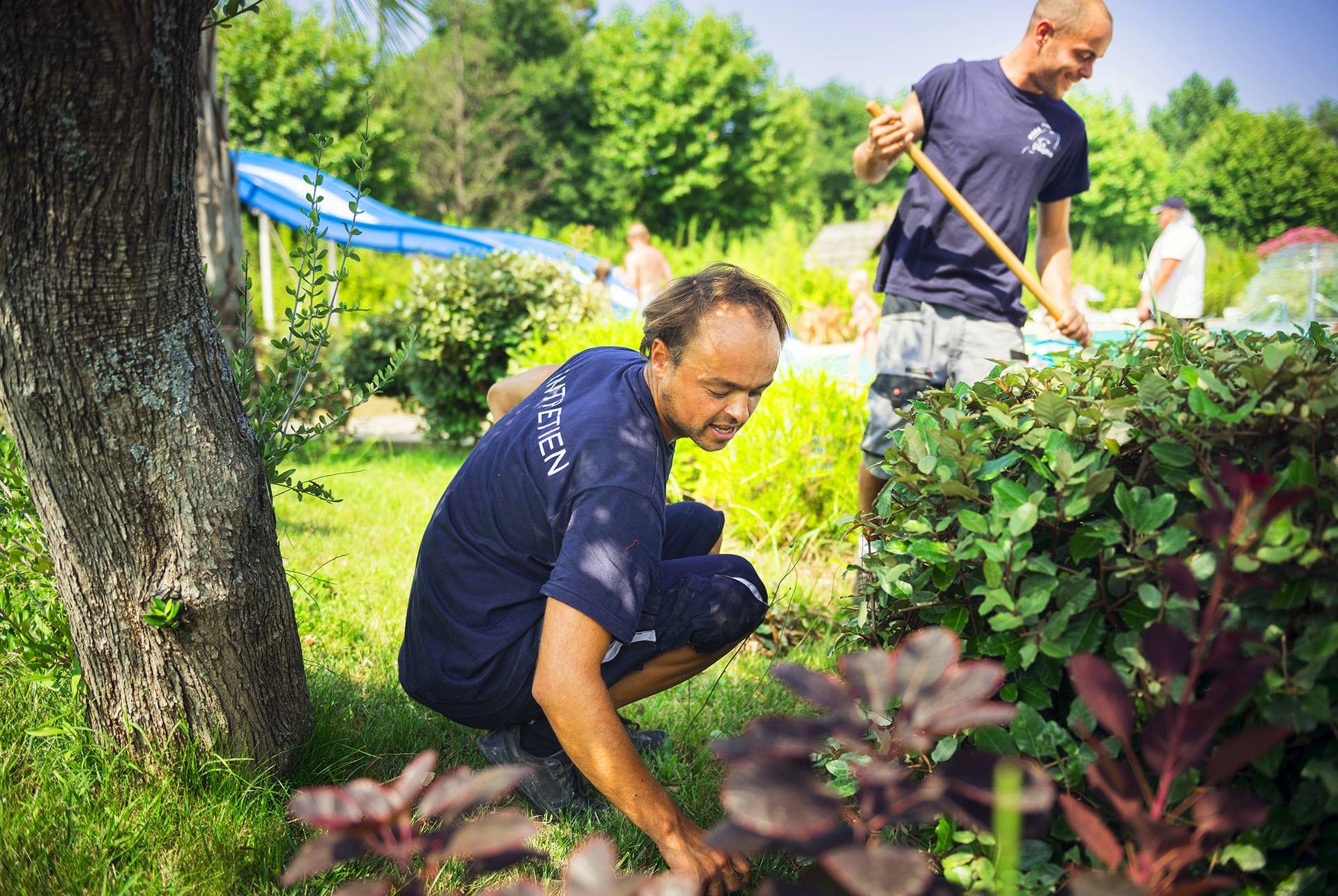 Homme jardin