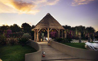 paillotte nature palmiers repas soiree