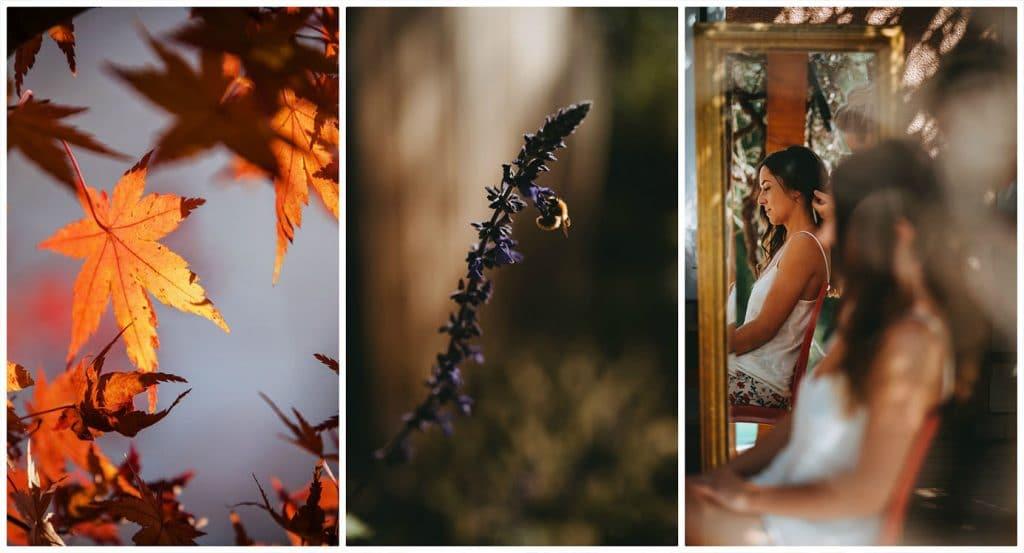 Les bienfaits de l'automne 2