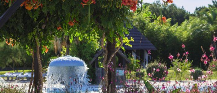 nature-fontaine-fleur