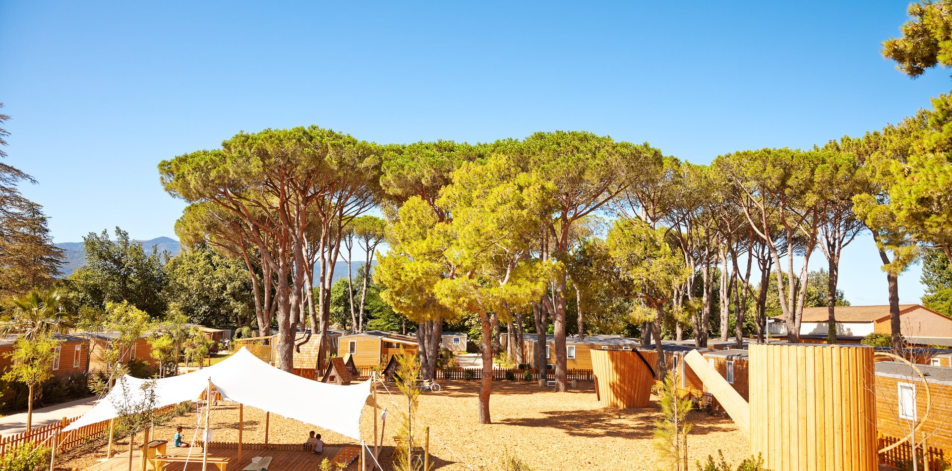 le dauphin - argeles - jardin d'olivia